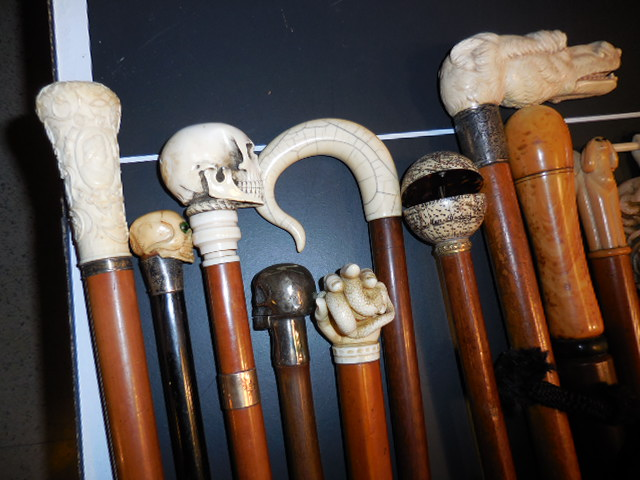 The Henry Foster Cane Collection - DSCN0003.JPG