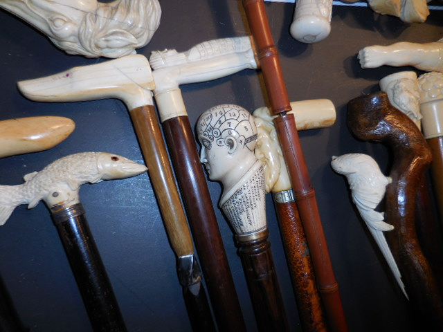 The Henry Foster Cane Collection - DSCN0012.JPG