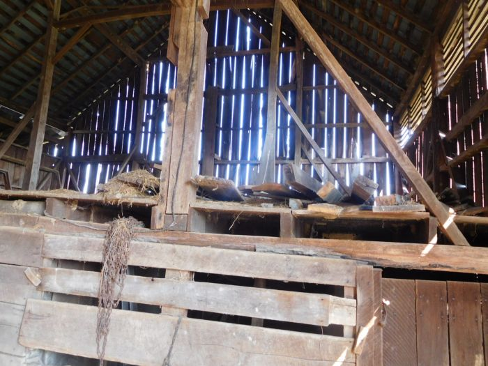 Hilbert Farm Auction- Sulphur Springs Area Jonesborough Tn. - DSCN2357.JPG